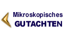 RASTER-ELEKTRONEN-MIKROSKOPISCHE UNTERSUCHUNG